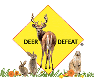 Deer Defeat